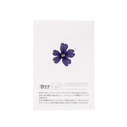 Dried Blue Verbena Edible Flowers