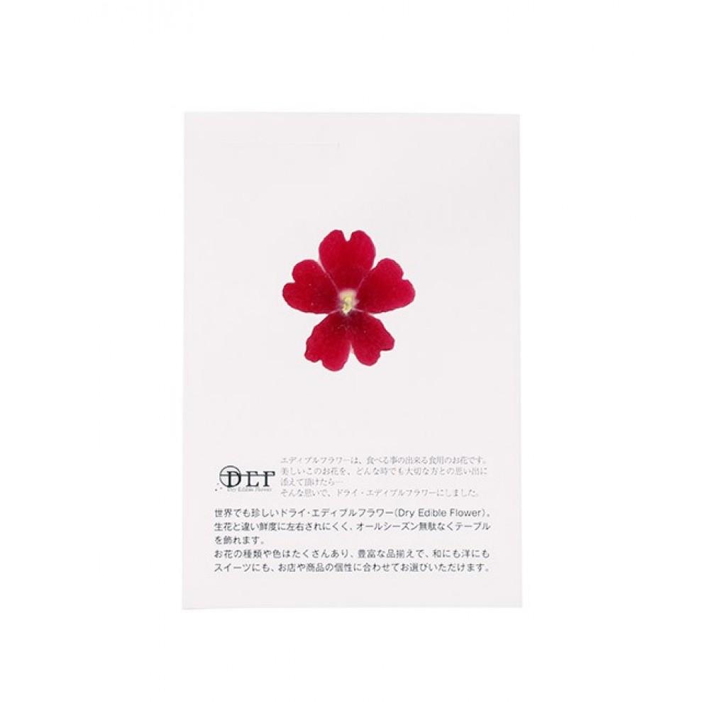 Dried Flowers Verbena Red Edible Online Store