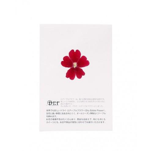 Fleurs séchées de Verveine Rouge  comestibles
