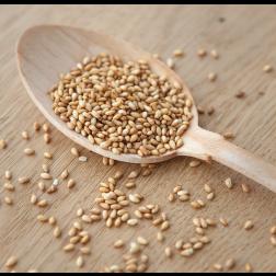 WASABI - Graines de sésame blanc grillées | Qualité supérieure - 50gr